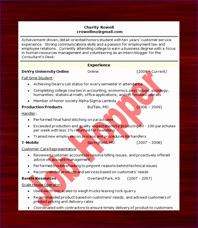 cool resume templates for job hoppers contemporary