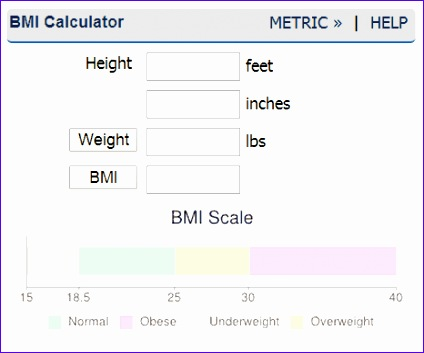 bmi calculator 424353