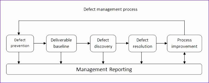 defect management process 694277