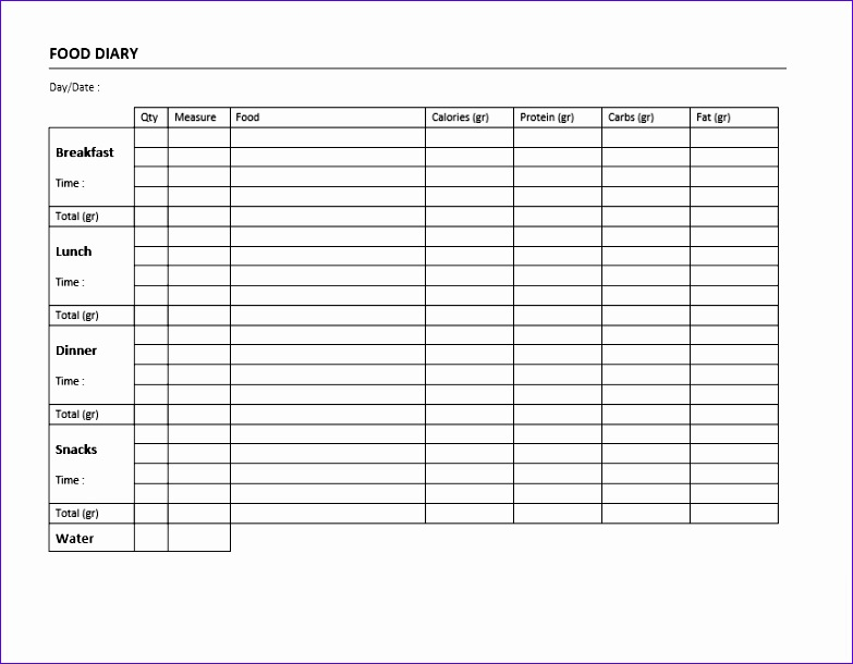 food diary template 783610