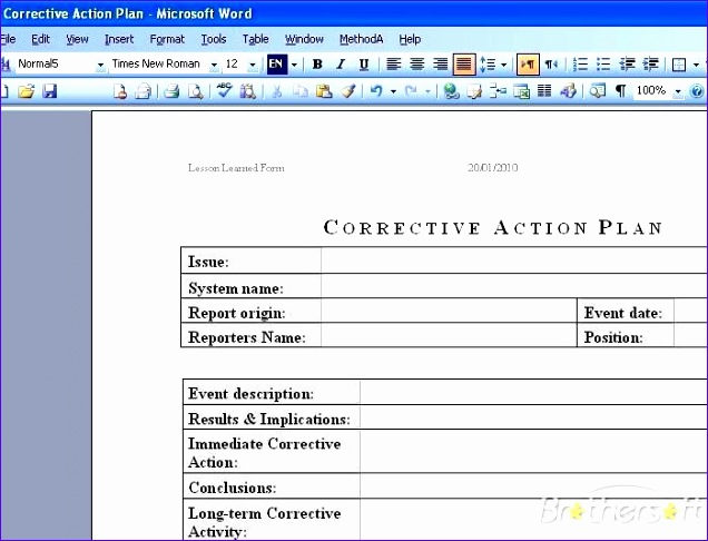 corrective action plan template free 206 636486