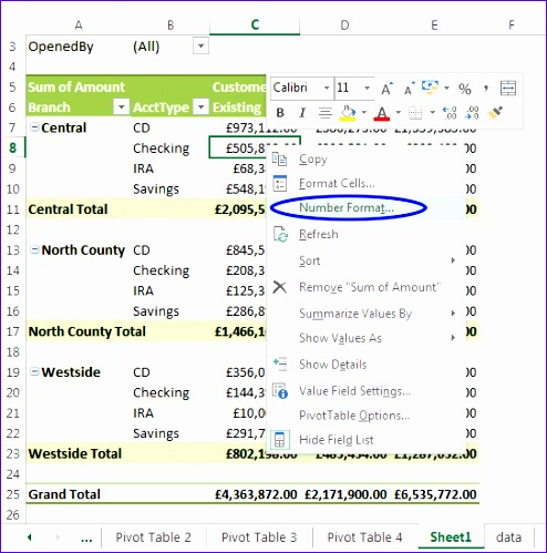 formatting the pivot table 494499
