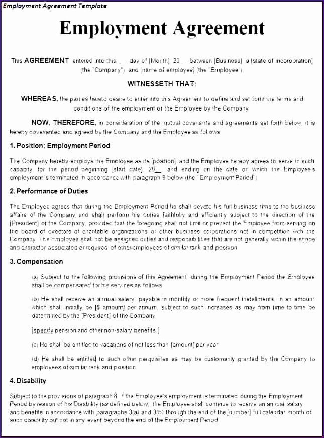 8 employment contract template 645872