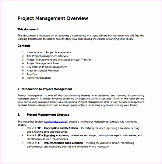 project overview template 532538