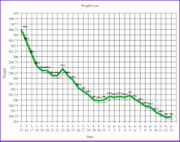 how to create weight loss graph 364287