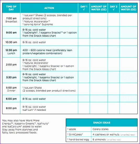 12 Hourly Calendar Template Excel Exceltemplates Exceltemplates