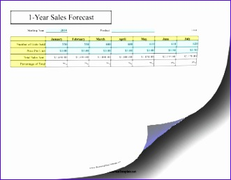 12 Month Sales Forecast