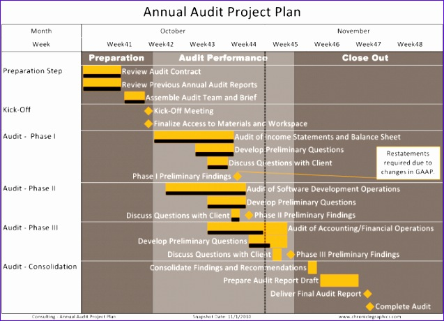 annual audit project plan