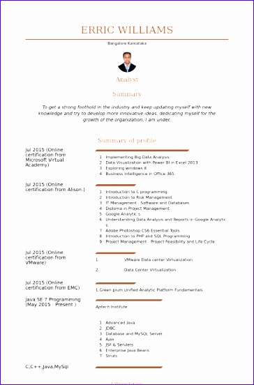 it analyst cv examples 364552