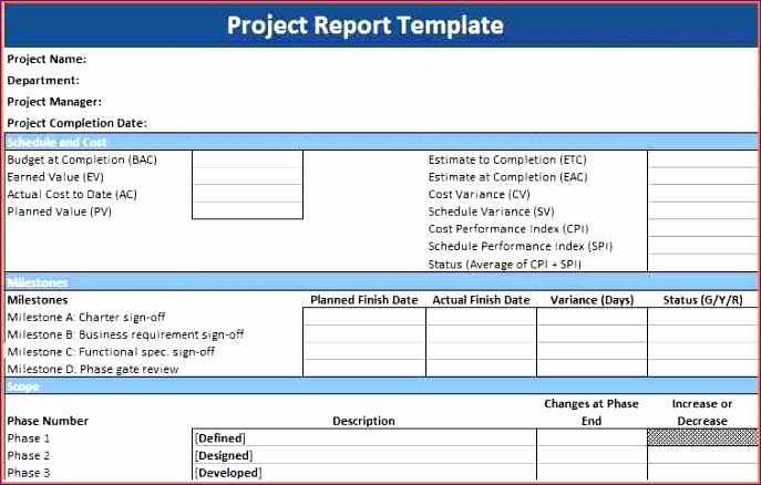 6 project report template