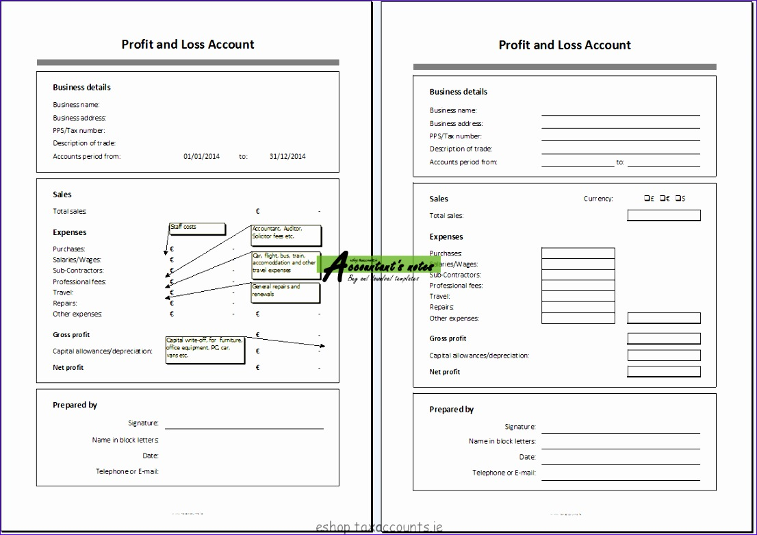 profit and loss account template 1106781