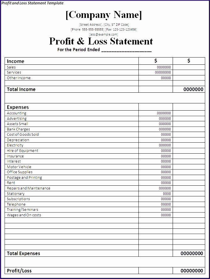 profit and loss statement template 669888