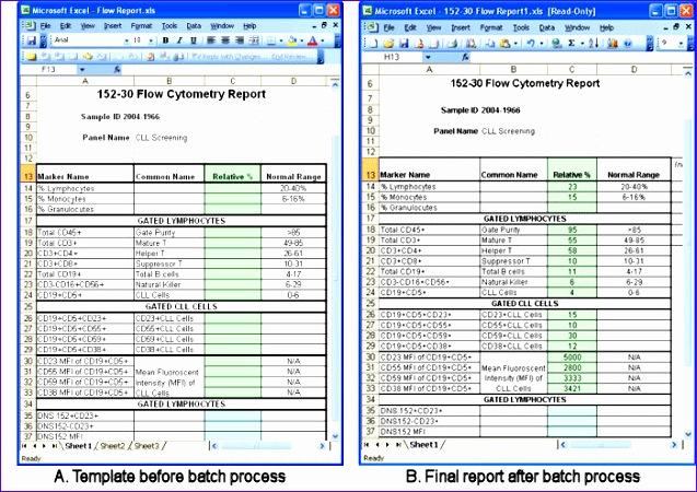 ... Profit Loss Statement Excel Template Bdzam. Excel Reporting Templates  766 637450  Profit And Loss Statement Excel Template