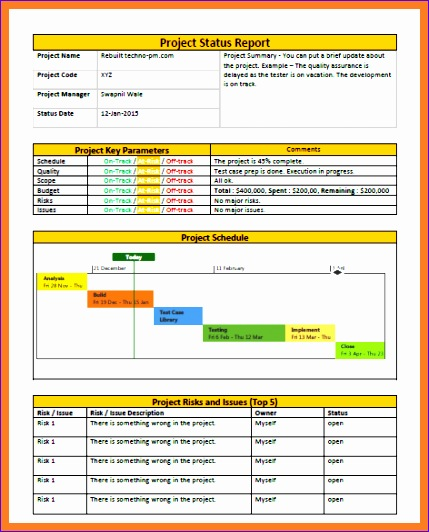 10 Project Dashboard Template Excel