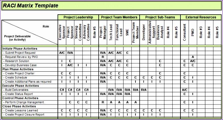 project matrix template 744402
