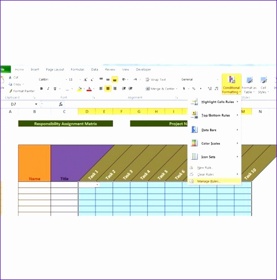 assignment matrix template project management
