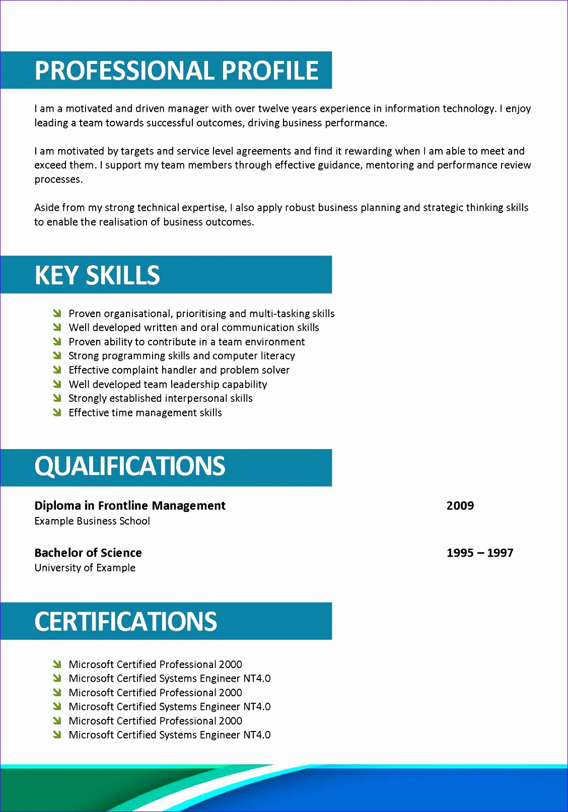 professional resume format doc 4352 11281613