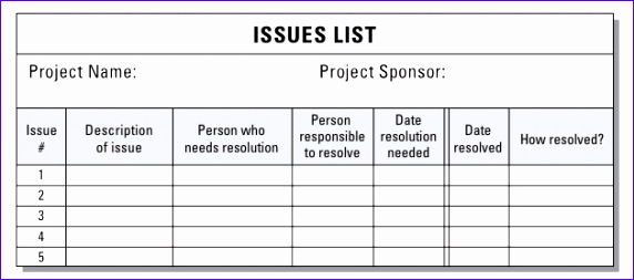 documenting managing project issues