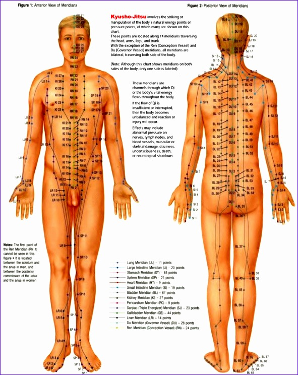 free printable pressure point charts 591744