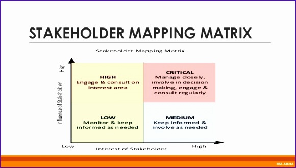 over ing plexities in stakeholder management 580330