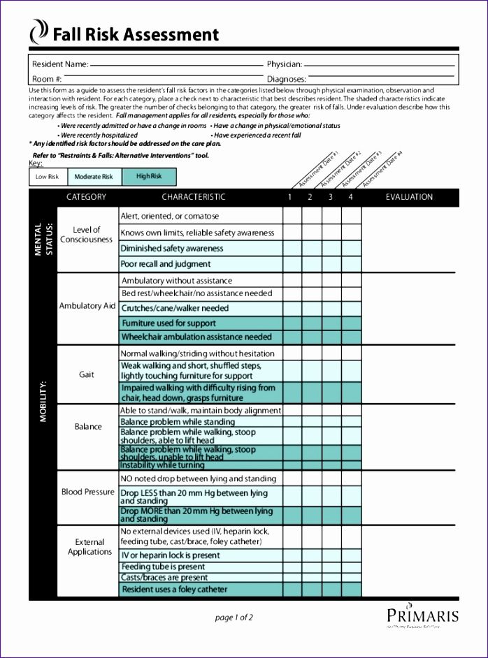 free risk assessment template blank 698942