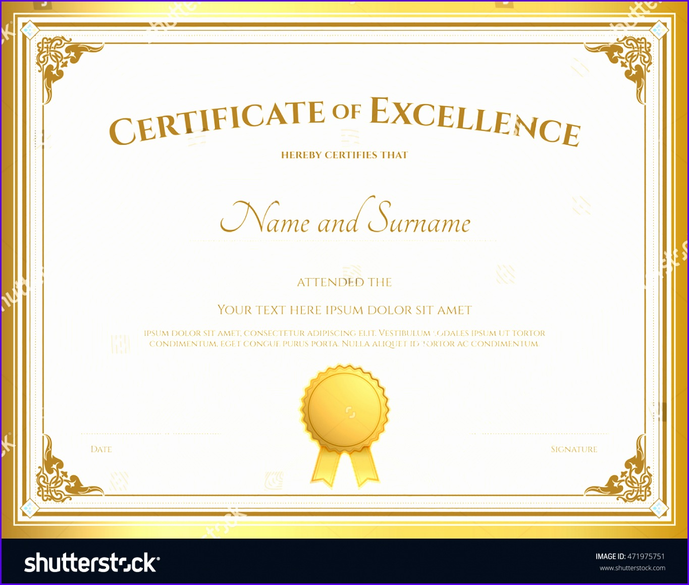 certificate of excellance 13651159