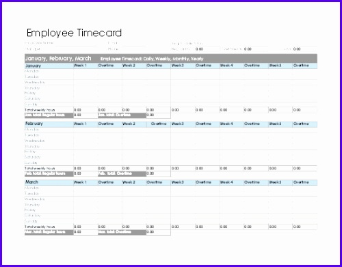 Employee timecard daily weekly monthly and yearly 500391