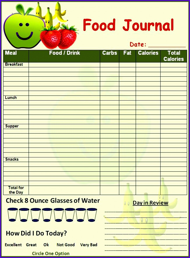 iop journal word template - 14 food journal template excel exceltemplates