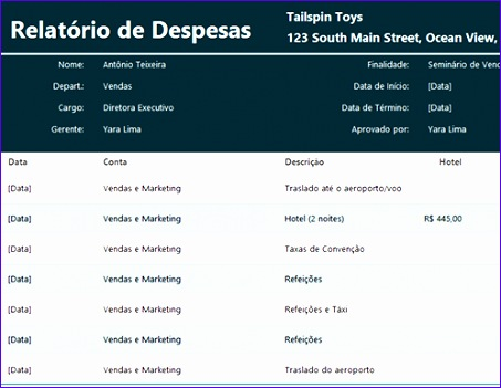 Relatório de despesas TM 453351