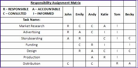 responsibility assignment matrix 455226