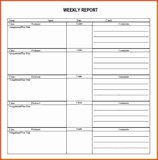 weekly activity report template 536542
