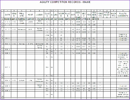 excel spreadsheet for agility 537413