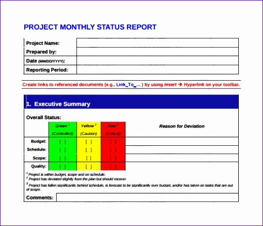 monthly management report template 532459
