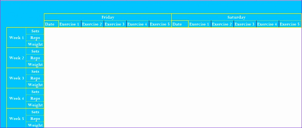 professional exercise log template excel
