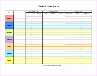 colorful 7 day exercise log 330258