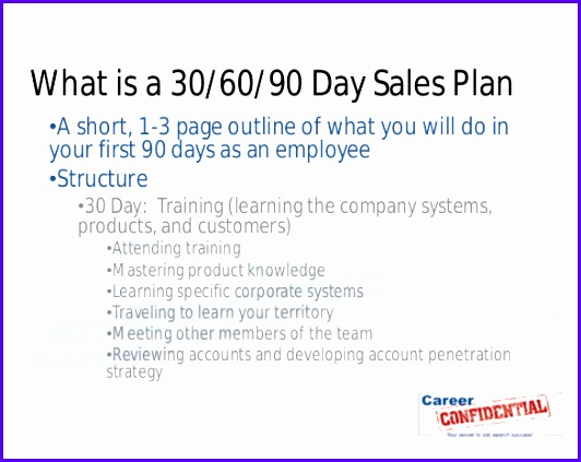 30 60 90 Day Sales Plan Sample Template 532423
