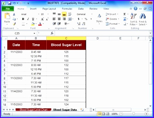 blood sugar tracker template for excel 527405