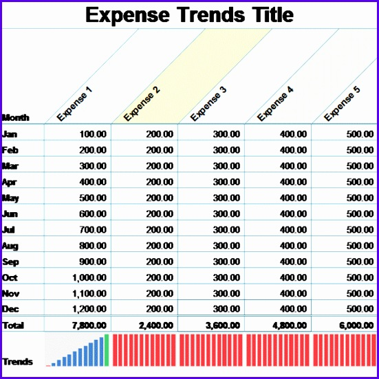 monthly expense report for small business