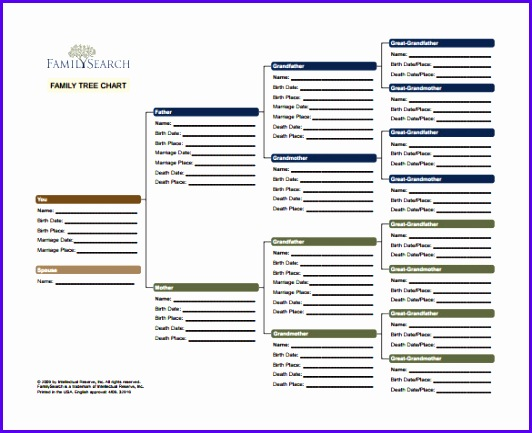 ms excel family tree template family tree template excel 532433