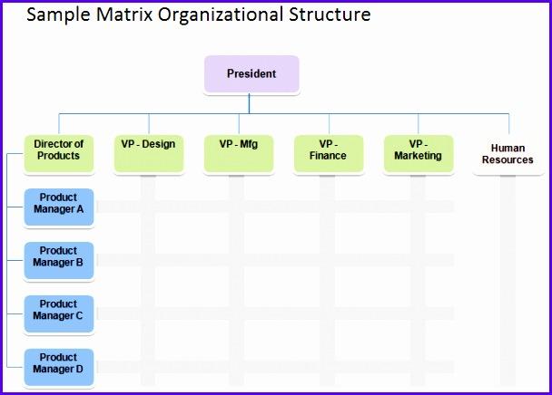 Matrix Organizational Structure 608436