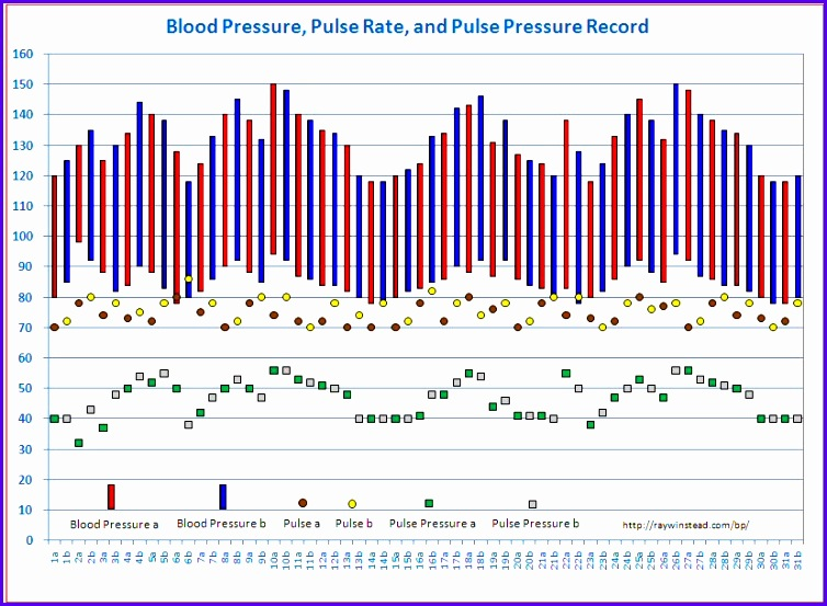 Vital Signs Tracker Free Templates for Graphing Blood Pressure Body Temperature Respiratory Rate Charts in Microsoft Excel Twice a Day 754553