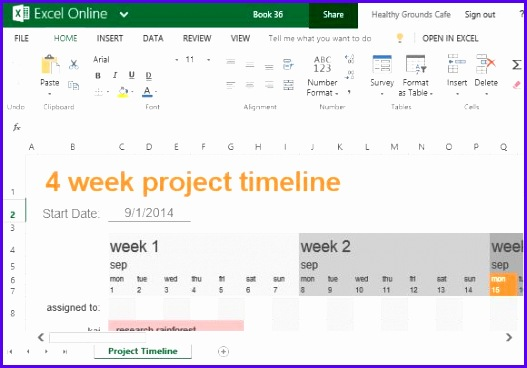 Project Timeline Template for School Work or Personal Use