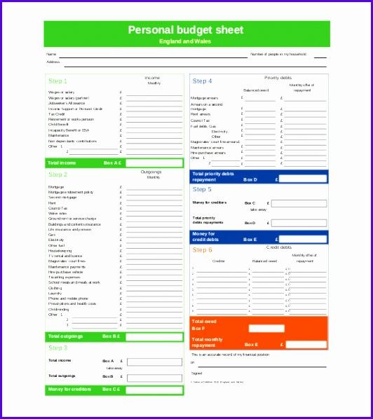 Personal Bud Sheet North Somerset Council PDF 532598