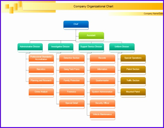 Chief Org Chart Example 546425