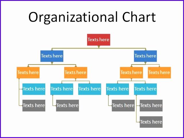 Printable Organizational Chart Template 19 642483